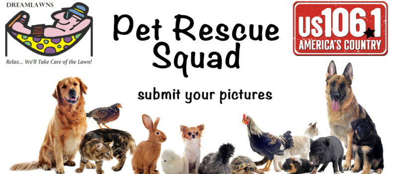 Pet Rescue Squad