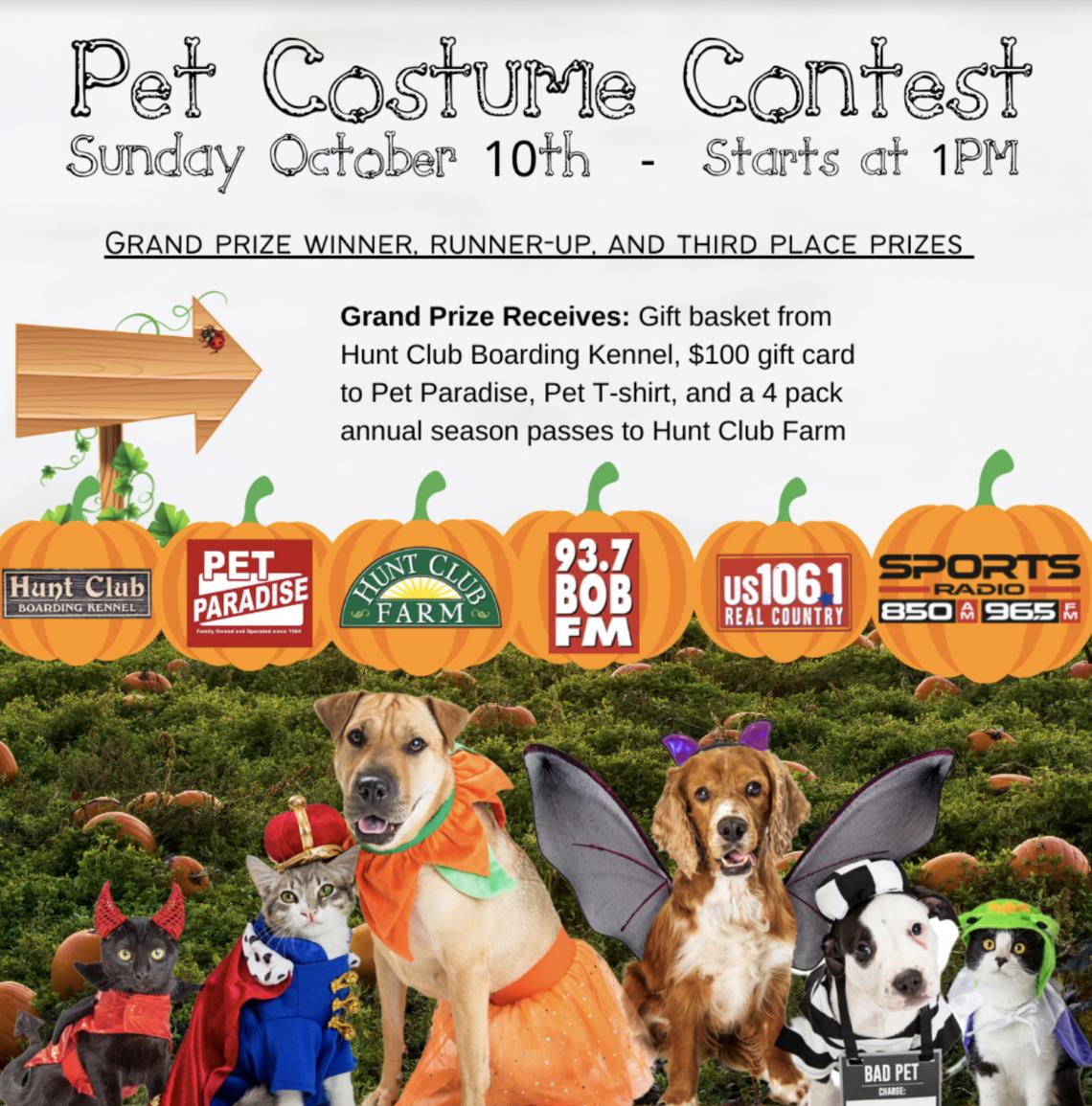 Pet Costume Contest